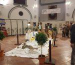 Montilla es ya oficialmente Zona de Interés Artesanal